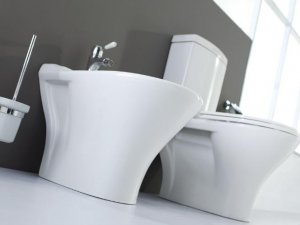 完美装修以它为准 卫生间装修效果图