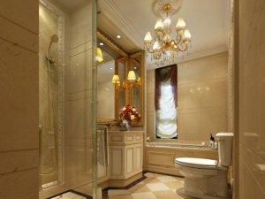 欧式风格卫生间装修图片 卫生间坐式马桶图片