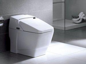 简约风格黑白卫生间装饰图片 卫生间智能马桶图片