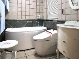 美式小卫生间智能马桶装修效果图 卫生间浴缸图片