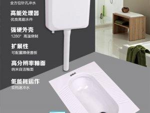 航标卫浴 蹲便器卫生间蹲坑水箱整套套装家用便池陶瓷防臭大便器蹲厕效果图