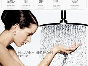 安华卫浴 淋浴花洒套装 精铜an2M9001C浴室淋雨沐浴花洒喷头套装产品图片