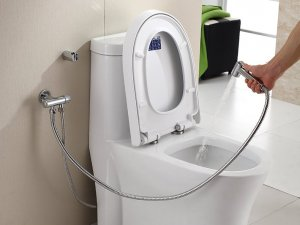 宏浪卫浴 全铜三通角阀喷枪套装 妇洗器冲洗器手持喷头马桶配件效果图