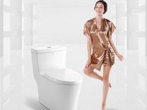 法恩莎卫浴 家用防臭静音大力神马桶 精铜淋浴花洒套装 套餐DP091效果图